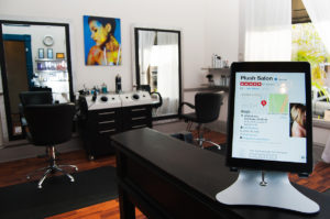 Inside Plush Salon